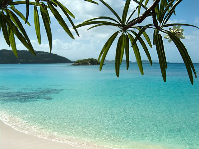 Cinnamon Bay Beach St John US Virgin Islands