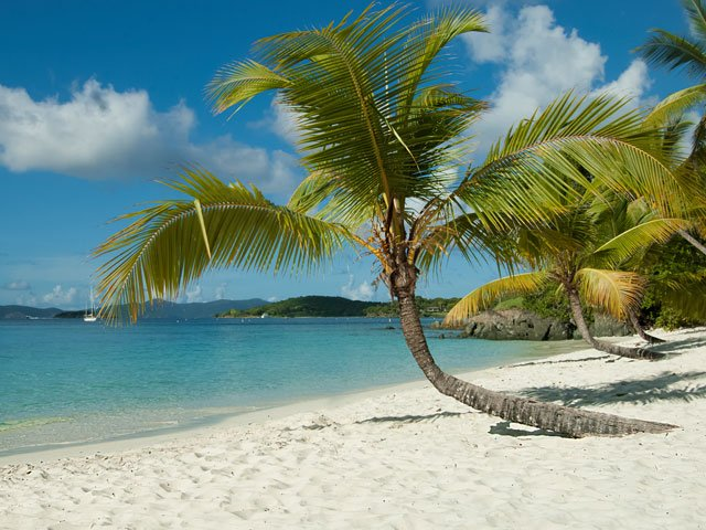 Salomon or Solomon beach on Saint John, US Virgin Islands