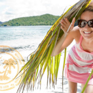 Who visits the US Virgin Islands? Here are the numbers …
