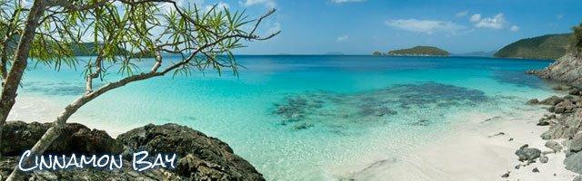 Cinnamon Bay Beach St John Us Virgin Islands Top